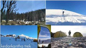 Kedarkantha Trekking Route Cost Packages etc Guides